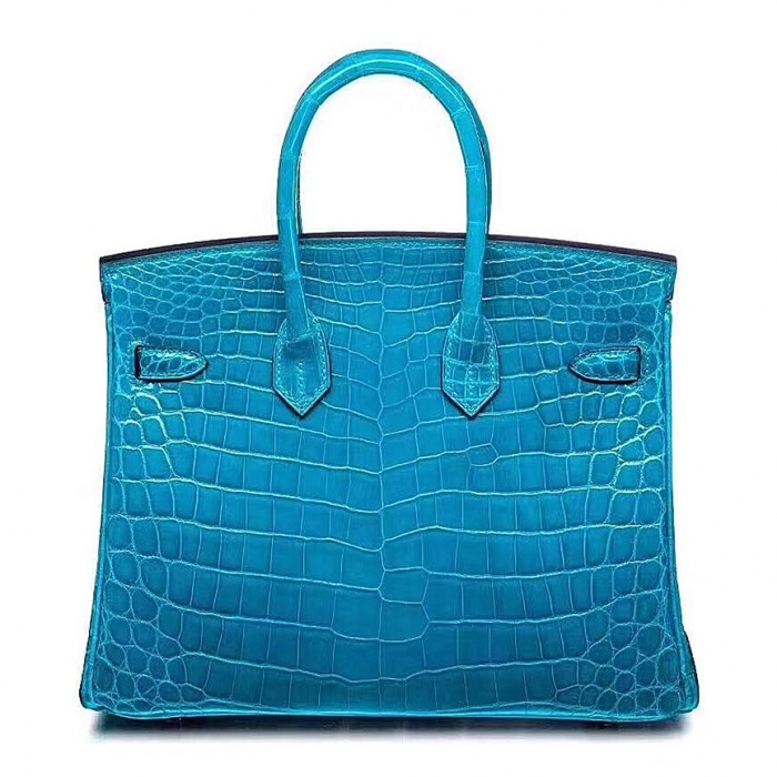 Designer Alligator Handbag-Blue-Back