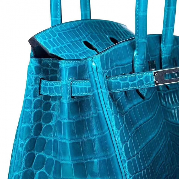 Designer Alligator Handbag-Blue-Detail