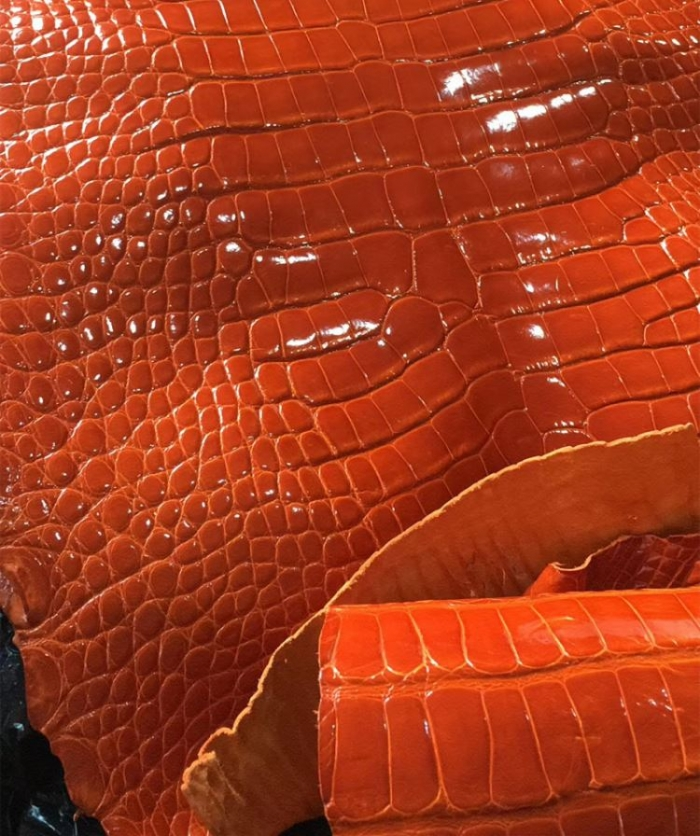 Genuine Alligator Skin-Orange