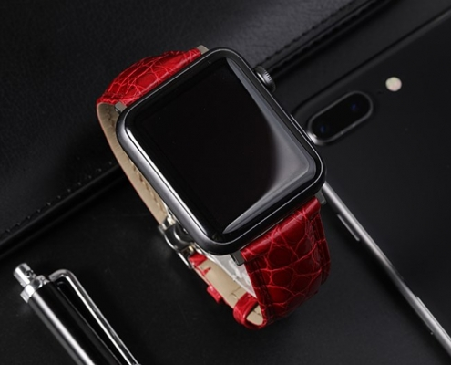 Best Third-party Apple Watch Bands