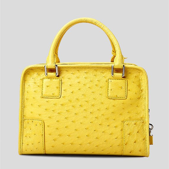 Ostrich Leather Handbags Ladies Ostrich Padlock Bags-Back
